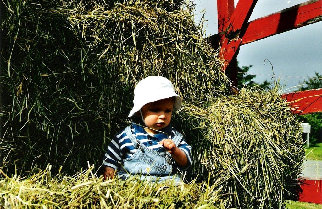 Agriculture - Enfant dans le foin (Photo : © Marie-Josée Roy)